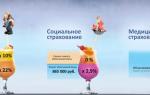 Страховые взносы в пенсионный фонд (пфр)