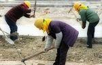 Испытательный срок без оформления трудового договора