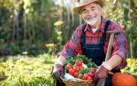 Фермерство как бизнес идея для начинающих: кфх — это что такое