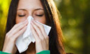 Дают ли больничный при аллергии