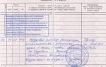 Как правильно оформить сотрудника в штат: трудовой договор, документы для приема на работу