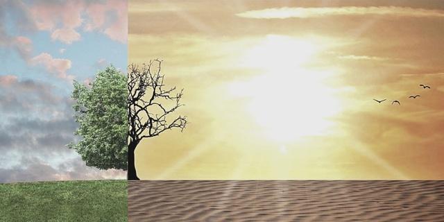 Формирование климата в коллективе
