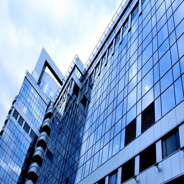 Бирюзовая организация как принцип управления компанией — что это такое