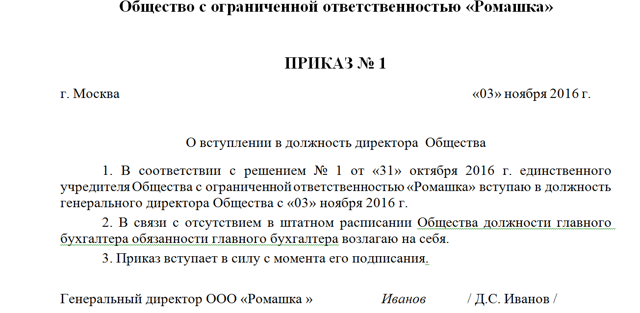 Приказ о назначении генерального директора ООО: образец