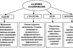 Управление персоналом и менеджмент организации - что это такое