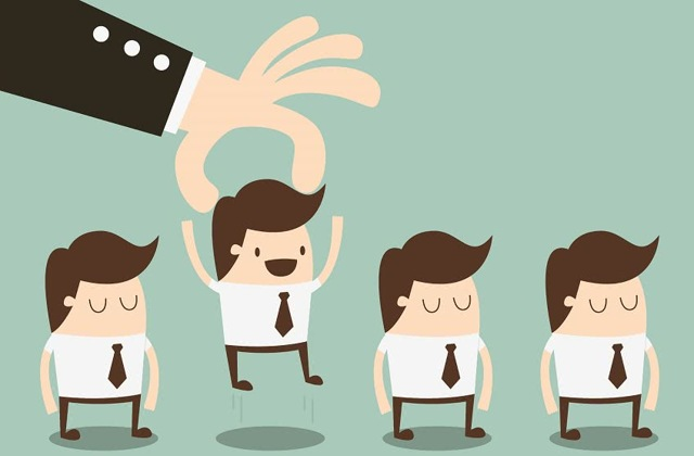 Отдел кадров на предприятии - что это такое, функции и обязанности