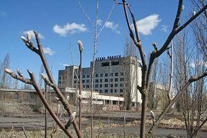 Чернобыльский отпуск – кому положен, как оформить работодателю